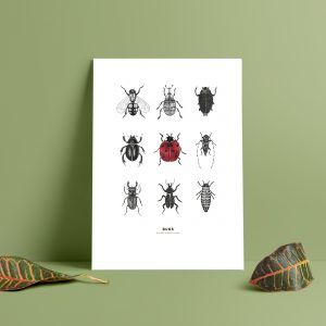 insekter till väggen,