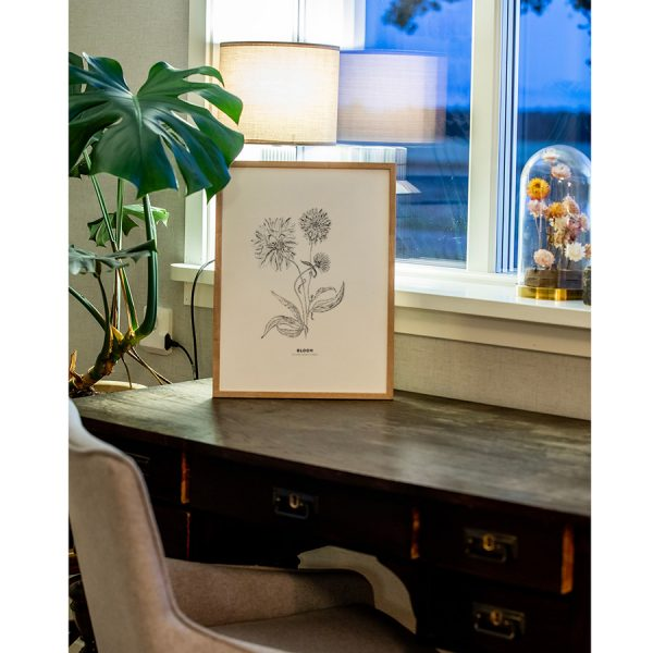 rudbeckia, blomma, tavla, designprints